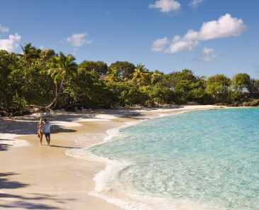 Caneel Bay Beach in St. John, U.S. Virgin Islands is one of the top-performing destinations in the Caribbean Photo Credit USVI Dept. Tourism